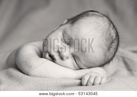 Cute Newborn Baby Sleeping