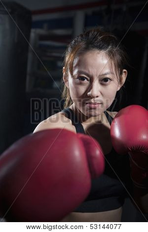 Portrait of determined female boxer in fighting stance looking at camera
