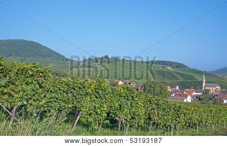 Birkweiler,german Wine Route