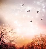 Butterflies On Red Trees Background