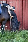 stock photo of bareback  - A teenager relaxing bareback on a North Swedish Horse - JPG