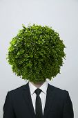 Businessman with circular bush obscuring his face