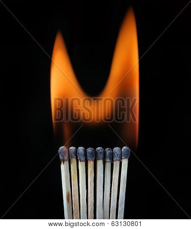 Burning row of matches against black