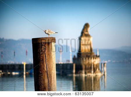 Lindau Harbour - Lake Constance, Bavaria, Germany