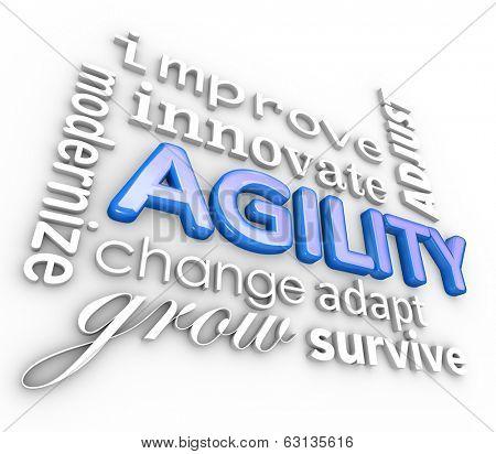 Agility 3d Word Collage Improve Innovate Adjust