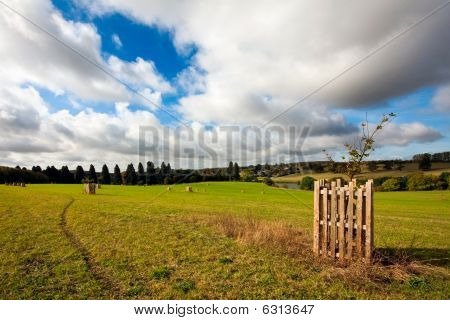 Footpath Through A Field With Cloudy Blue Sky Overhead