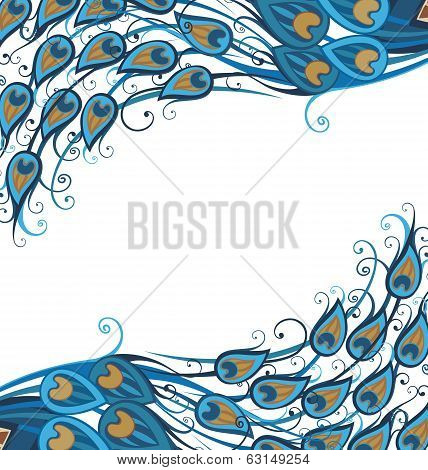 Vector peacock feathers background