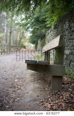 Park Bench In Countryside