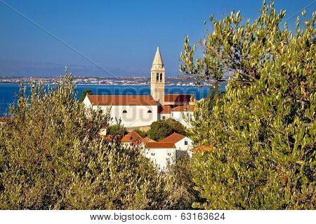 Dalmatian Style Town Of Kali