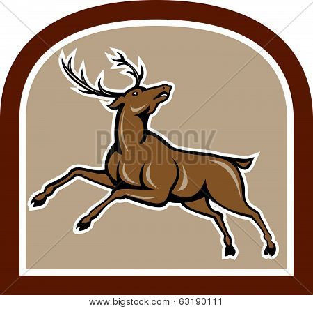 Stag Deer Looking Up Jumping Cartoon
