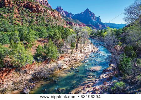 Spring In Zion National Park