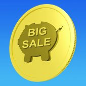 Big Sale Coin Means Huge Money Savings