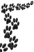 image of dog footprint  - Black animal footprints on white background - JPG