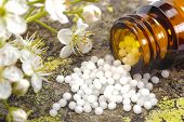 picture of placebo  - alternative medicine and homeopathy with herbal pills - JPG