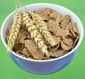 stock photo of cereal bowl  - Bowl of breakfast bran flake cereal and wheat - JPG