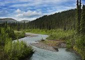 stock photo of denali national park  - Alaska Landscape In Denali National Park - JPG