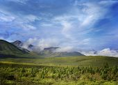 image of denali national park  - Alaska Landscape In Denali National Park - JPG