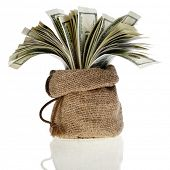 sack bag full money banknotes isolated on a white background