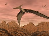 image of pteranodon  - Three pteranodon dinosaurs flying upon rocky landscape by sunset light - JPG