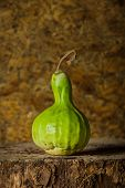 foto of calabash  - Still life art photography with calabash on the timber - JPG