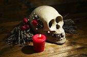Composition with skull, dried herbs and candle on wooden background