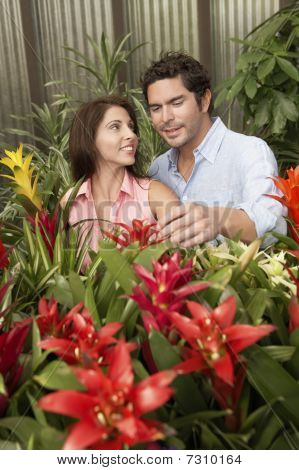 Couple standing in amongst and  choosing plants at nursery