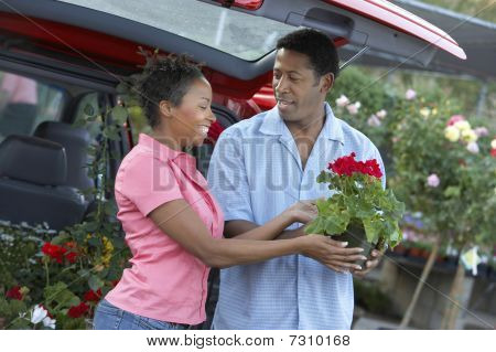 African American Couple choosing plants at nursery