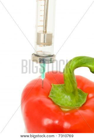 Genetically Modified Object - Pepper