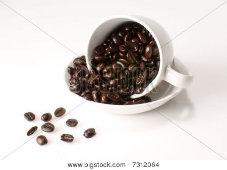 fresh roasted coffee beans in a coffee cup