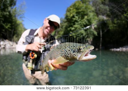 Fly fisherman holding fario trout recently caught