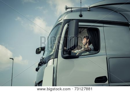 Portrait of a truck driver sitting in cab