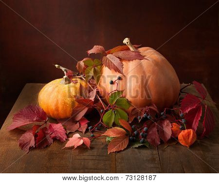 Autumn still life - pumpkins, autumn leaves  and physalis against the background of old wooden wall.