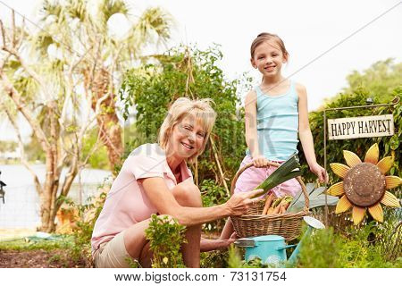 Grandmother And Granddaughter Working On Allotment