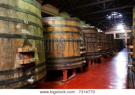 Wine Barrels In A Argentinian Winery.