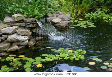 Homemade Pond