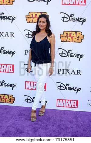 LOS ANGELES - OCT 1:  Constance Marie at the VIP Disney Halloween Event at Disney Consumer Product Pop Up Store on October 1, 2014 in Glendale, CA