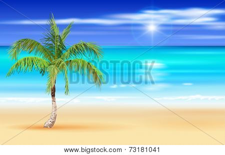 Palm tree on the beach. Vector drawing / Eps10