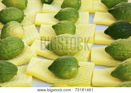 The Jewish holiday of Sukkot. Ritual fruit - citrus on the counter pre-holiday bazaar