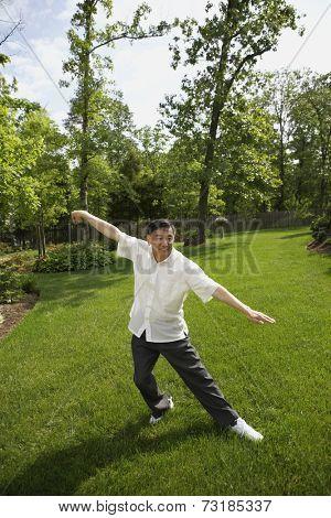 Senior Asian man practicing tai chi