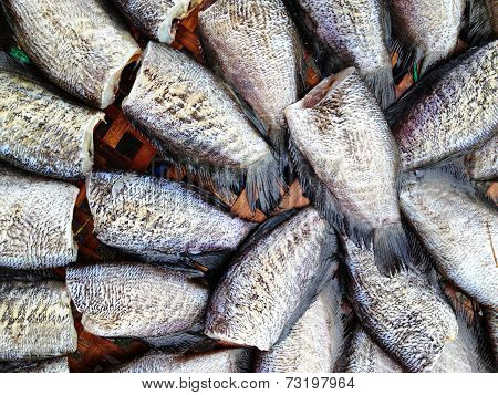 drying snakeskin gourami fishes