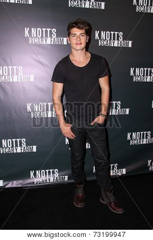LOS ANGELES - OCT 3:  Gregg Sulkin at the Knott's Scary Farm Celebrity VIP Opening  at Knott's Berry Farm on October 3, 2014 in Buena Park, CA