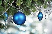 picture of fir  - Blue Christmas balls hanging on fir tree - JPG