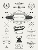 Set of Retro Vintage Insignias and Logotypes. Business Signs, Logos, Identity Elements, Labels, Badges, Frames, Borders and Floral Design Elements. Instagram Art Style poster