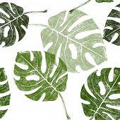 foto of tropical rainforest  - hand drawn tropical leaves seamless - JPG