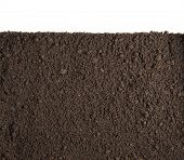 foto of section  - Soil or dirt section isolated on white background - JPG