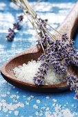 stock photo of purple sage  -   sea salt with herb close up                               - JPG