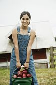 picture of pre-adolescent girl  - Girl carrying bucket of apples on farm - JPG