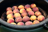 stock photo of peach  - Peaches on the grill - JPG