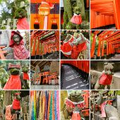 foto of inari  - Collection of Fushimi Inari Taisha Shrine scenics - JPG