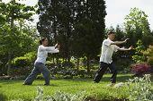picture of tai-chi  - Senior Asian couple practicing tai chi - JPG